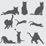 9 cat silhouettes set stock illustration