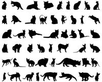Cat silhouettes set. Set of different vector cats silhouettes for design use royalty free illustration