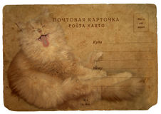 Cat sings a song.  Old postcard Royalty Free Stock Images