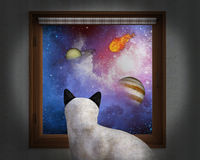 Cat Sit Window, Stars, Planets. A curious house cat sits and looks out the window and sees the universe, galaxy, and stars. Planets and a fireball add to the see Royalty Free Stock Photo