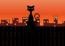 Cat siting on fence Stock Image