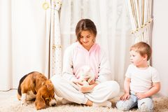 Small kitty in the big family. The cat is siting on the girl`s knees, beagle is lying near her, the boy is sitting on the rug near his sister Stock Images