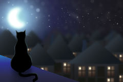 The cat sits on the roof. And watching the city at night and the moon Royalty Free Stock Photo