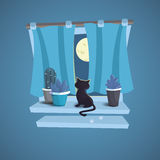 A cat sits on the windowsill. Night Royalty Free Stock Images
