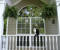 Cat sitting on Front Porch Rail of Home Stock Images