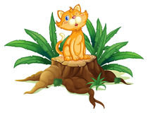 A cat sitting on a stump with leaves Royalty Free Stock Photos