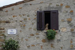 Cat sitting on a window ledge in Vinci. This photo was taken in Vinci, the village where Leonardo da Vinci was born Stock Photography