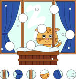 Cat sitting on the winter window with flower pots and curtains. Royalty Free Stock Images