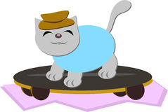 Cat on a Skateboard Stock Photo