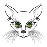 Cat sketch Beautiful cat with vyrazatelnymi bright green eyes and long bushy mustache. Cat sketch Royalty Free Stock Image