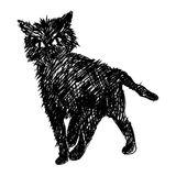 Cat sketch. Hand drawn illustration Stock Photo