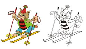 Cat skier Stock Photos