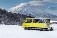 Cat skiing in Japan Stock Image