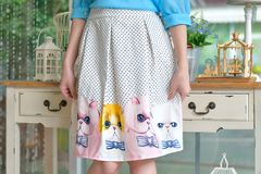 Cat skirt Stock Image