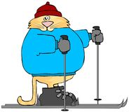 Cat On Skis Stock Photos