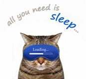 Cat in a sleep mask with text 3 stock image