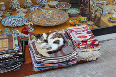 Cat sleeping in carpet. Cat sleeping in traditional carpets in street of Istanbul Stock Image