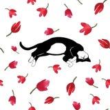 Cat sleeping on tulips. Vector illustration. Stock Photos