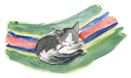 Cat sleeping - watercolor. A cute little cat sleeping on a coloured deckchair - Watercolor artwork vector illustration