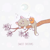 Cat sleeps on a branch. An illustration with cute kitten and squirrel sleeping on a branch of pine. Stylish vector illustration vector illustration