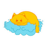 Cat sleeps on cloud. Soft fluffy pet and cloud Royalty Free Stock Photo