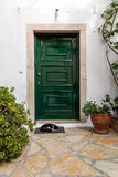 Cat sleeps in front of the closed door Royalty Free Stock Photos