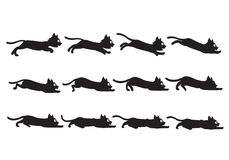 Cat Sliding Sprite nera Fotografia Stock
