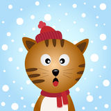 Cat with snowy background Royalty Free Stock Image