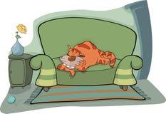 Cat on a sofa. Cat  sofa animal room pets feline interior Stock Photography