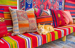 The cat on the sofa. The red cat among the rugs and pillows at the carpet store, probably, the best co-worker, consultant, guard and expert in question of kilim royalty free stock images