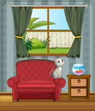 A cat at the sofa watching the fish in the aquarium Stock Images