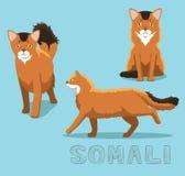Cat Somali Cartoon Vector Illustration royaltyfri illustrationer