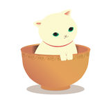 Cat soup Royalty Free Stock Photos