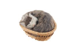 Cat souvenir in wicker basket Royalty Free Stock Photos