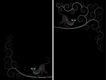 Cat spiral flayer Stock Images