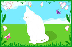 Cat on a spring meadow Stock Photo