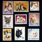 Cat stamps stock photos