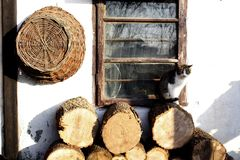 Cat standing on a logs stacked by a white rustic house with a wicker basket hanging on the wall and a cracked window. royalty free stock image