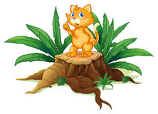 A cat standing on a stump with leaves Royalty Free Stock Photo