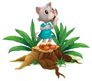 A cat standing on a stump with leaves Royalty Free Stock Photos