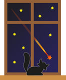 Cat and star. Cat watching a falling star Stock Photo