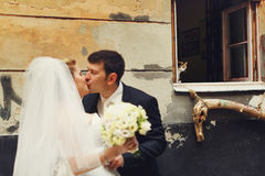 Cat stares at the charming newlyweds through the window Royalty Free Stock Images