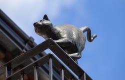 Cat Statue i York Royaltyfria Foton