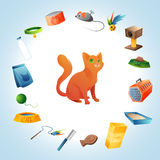 Cat stuff concept Royalty Free Stock Photo