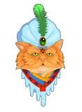 Cat Sultan Royaltyfria Bilder