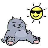 Cat and sun Royalty Free Stock Photography