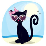 Cat in sunglasses Stock Photo