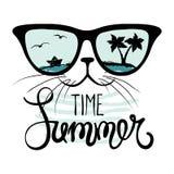 Cat in sunglasses Stock Images