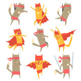 Cat Superhero Character Set. Cat Superhero Character Flat Cute Cartoon Design Vector Icon Collection On White Background Stock Images
