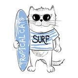 Cat surfer Stock Image